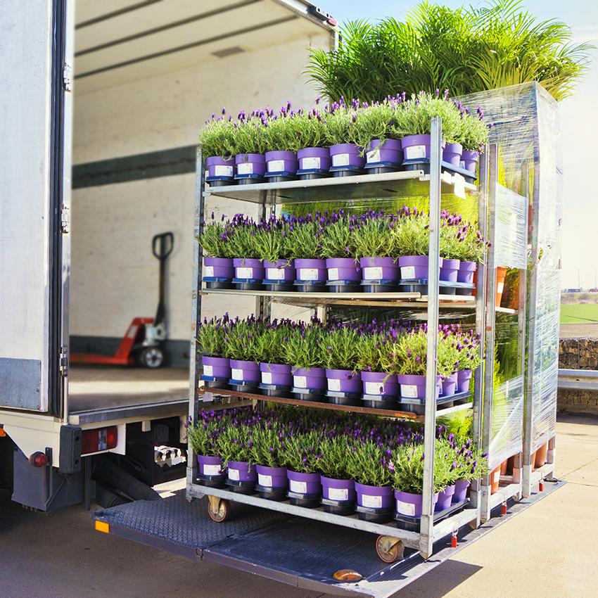 Bloemen-vrachtwagen---hoe-we-werken